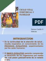 Ciclo Vital Individual y Familiar