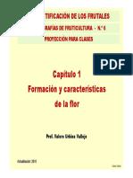 Monografia No 6 Cap. 1. Formacion y Caract. de La Flor