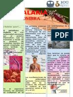 La Malaria y Su Sombra
