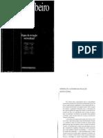 Etapas da Evolução Sociocultural - O Processo Civilizatório - Darcy Ribeiro.pdf