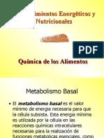 Requerimientos Energéticos y Nutricionales