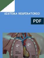 Sistema Respiratorio!