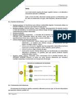 12 0 Fuentes de Energc3ada Energc3ada de La Biomasa