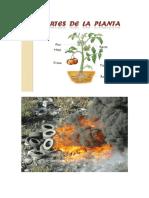 Contaminacion en Guatemala