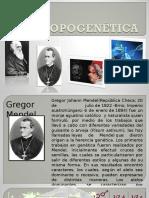 antropogenetica
