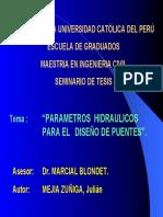 EXPOS.1 PARAMETROS  HIDRAULICOS.pdf