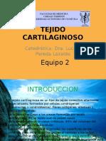 tejidocartilaginoso-101022131402-phpapp01