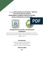 Informe Frijol Caupí (15x40)