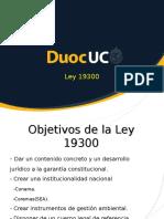 Ley 19300