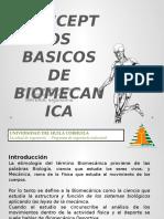 5.Biomecanica_G5A17