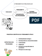 58585193 Periodizacao Na Musculacao
