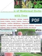 Cultivation of Medicinal Herbs with Uses (Abelmoschus Moschatus, Abroma Augusta, Abrus Precatorius, Acacia Arabica, Acacia Catechu, Acacia Fernesiana, Acanthus Ilicifolius, Achillea Millefolium, Achyranthes Aspera, Aconitum Napellus, Aconitum Heterophyllum, Acorus Calamus, Adansonia Degitata, Adina Cordifolia, Adhatoda Vasika, Alce Rosea)