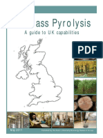 Biomass Pyrolysis Guide - May 2011