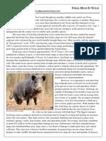 2017_May Wildlife Note