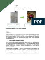 Analisis de Resultados-obtencion de Acetona