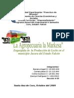 Trabajo Original de Proyecto UNEFM[1] 2010