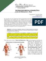 Escala de Funcionalidad Musculo Esquelética Por Luis Diaz 2017