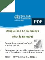 Dengue and Chikungunya.pdf