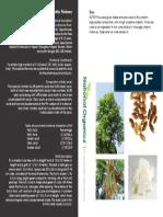 Butter Phulwara.pdf