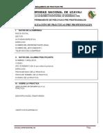 Reglamento Ppp Ing Civil 2013