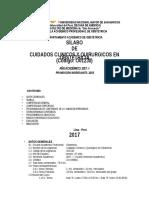 Silabo 2017 Ccyq -Unmsm-03-04 17