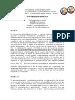 Preinforme Laboratorio 2, Hidrometalurgia I