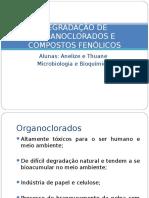 Degradação de Organoclorados e Compostos Fenólicos
