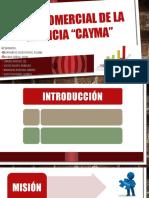 Plan Comercial de Agencia