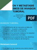 Exposicion Metastasis Invasion Tumoral