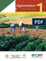 Manejo Agronomico de Frijol-cartilla 1-004