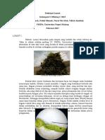 Deskripsi Lumut Kelompok 3 Besar.docx