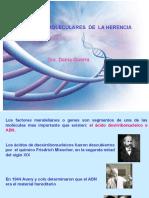2 Bases Moleculares de La Herencia