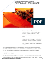 Regula Tu Intestino Con Semillas de Papaya - Barcelona Alternativa