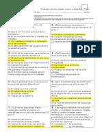 Prueba-Septimo-Basico-Prehistoria.docx
