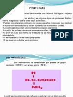 6. Proteinas
