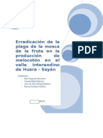 Informe 2_adp_proyectos Ultimo