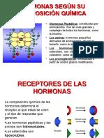 Hormonas - Completo Editado