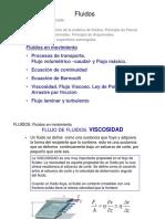 FluidosDinamica2010.pdf