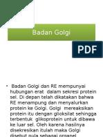 Badan Golgi