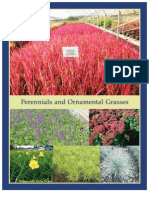 Perennials & Ornamental Grasses - Leo Gentry Nursery