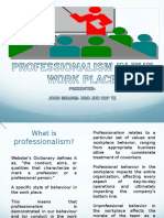 Professionalism in the work place-longer version.ppt