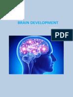 Kowshick Bala Research -Brain Developement