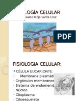 01 Fisiologia Celular y Transporte a Traves de Membranas