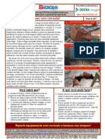 Process Safety Beacon - May 2017 - Portuguese