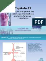 Raff Fisiologia Figuras c49 Sist Gastro