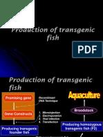 Ikan transgenik