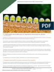 10 Habilidades Para La Regulación Emocional en Adultos - Actualidad en Psicología