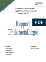 Rapport Tp Mettallurgie