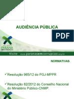 Audiencia_publica_final.ppt