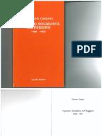 Gaetano Cingari,  Il Partito Socialista nel reggino,